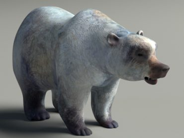 The Hunt – Texturing the bear
