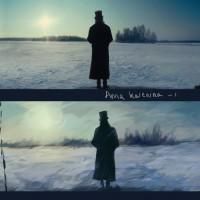 Film Study: Anna Karenina